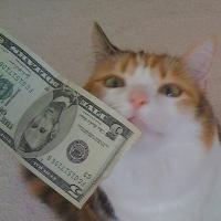 Even Jackie likes to rub money.