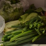 Green onions, bok choy, and lettuce.